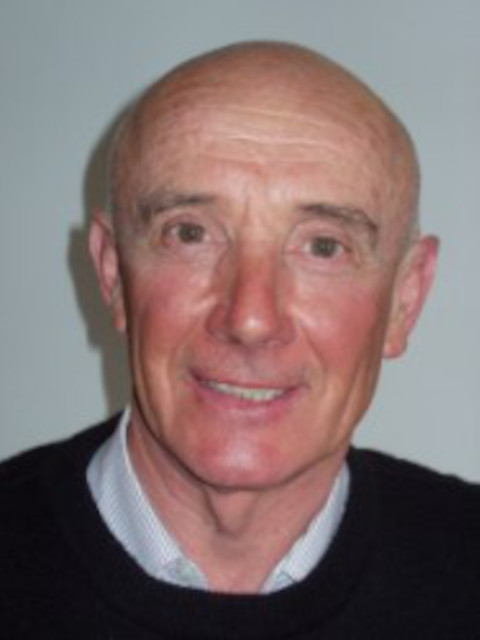 Gianpietro Zanni